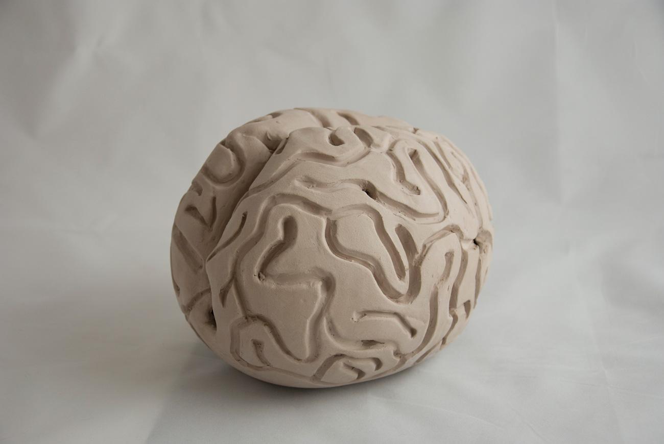 brain-5-DSC_0662